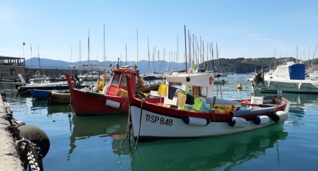 Camping River - omgeving Lerici